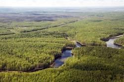Накопленная добыча на Лемпинской площади Салымского месторождения ООО «РН-Юганскнефтегаз» достигла 20 миллионов тонн нефти